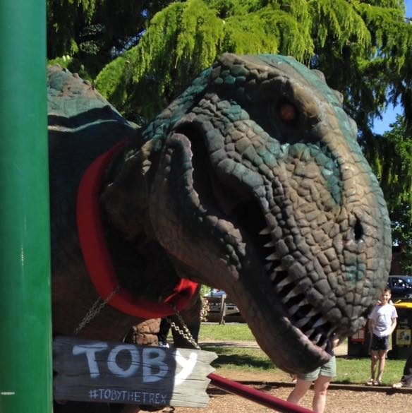 Toby the T-Rex roving through the park