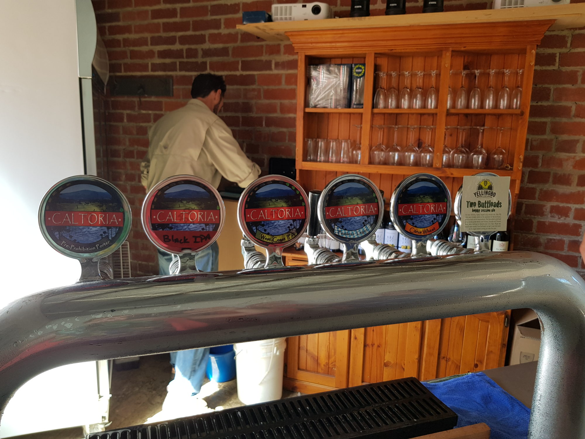 Beer fonts in the Hive Bar