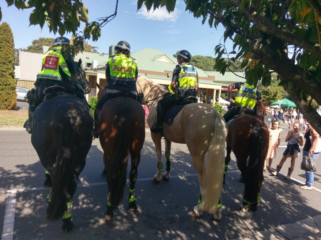 Visit from the mounted Police